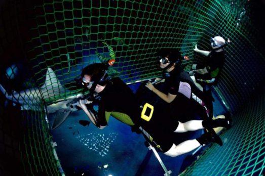 Aquario londres 2