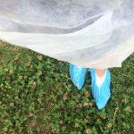 O que visitar em Parma – Parmigiano Reggiano – outfit
