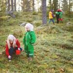 Suécia no Airbnb
