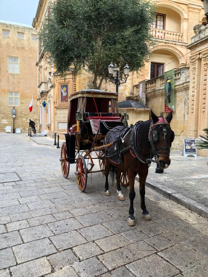 Malta - Mdina & Marsaxlokk dag 3