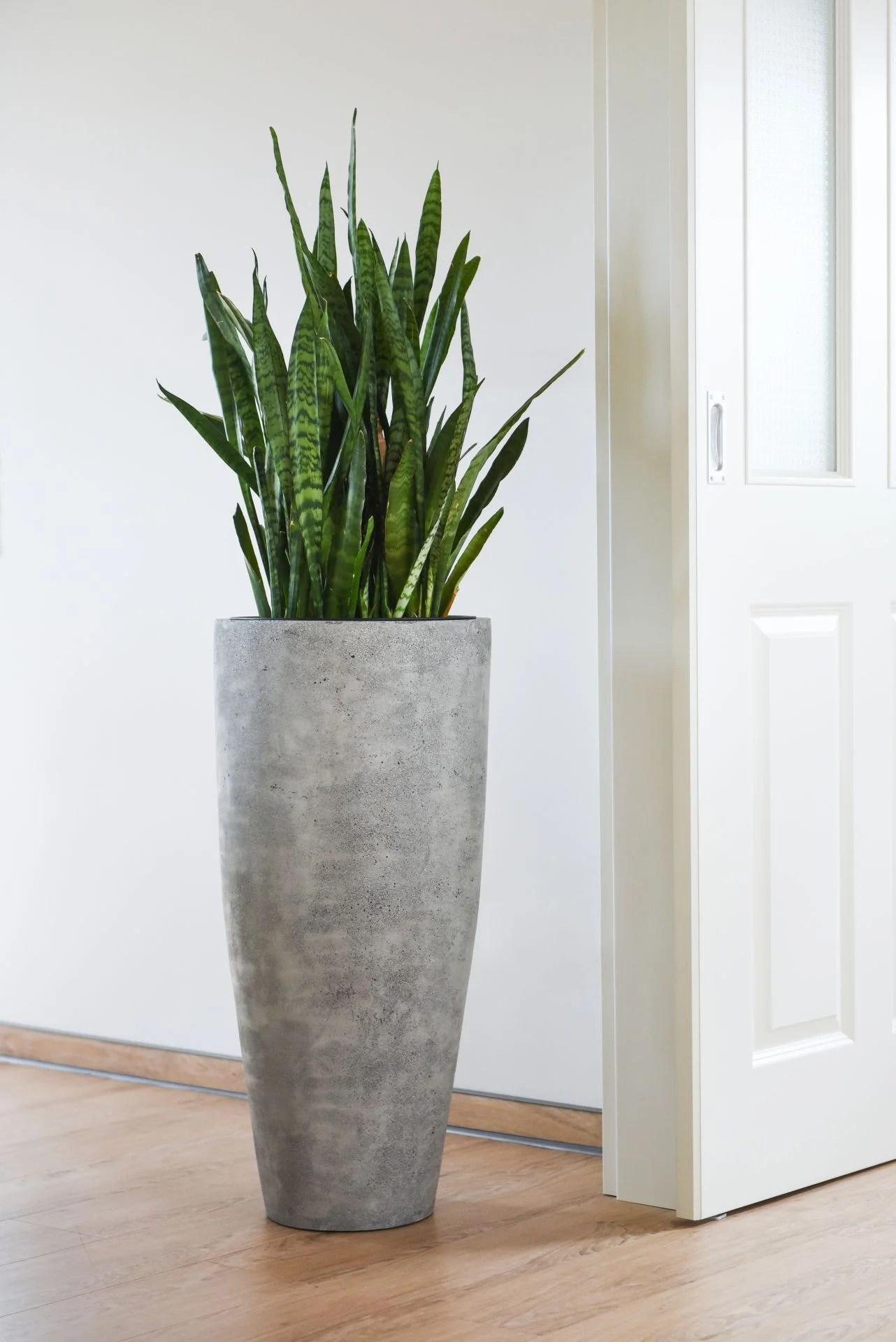 gro e blument pfe f r innen pflanzk bel mit sichtschutz. Black Bedroom Furniture Sets. Home Design Ideas