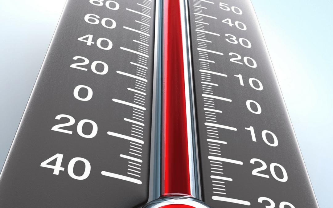 5 tecken på värmeslag hos din hund