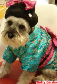 The 10 Sluttiest Doggy Halloween Costumes - Vocativ