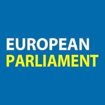 """L'Europa dichiara lo stato di """"emergenza climatica"""" foto"""