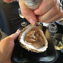 C-side oysters