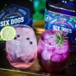 Five Local Gins to Try this Summer