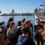 Culture Connect SA Waterfront Tour
