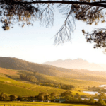 Spend the Rest of Summer in the Cape Winelands