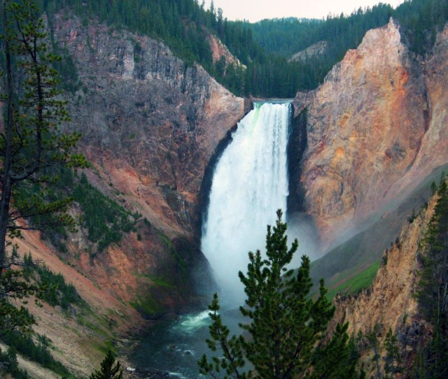 Waterfall On The Yellowstone River Takes The Plunge Into The Grand Canyon Of Yellowstone Photo Mcintosh C