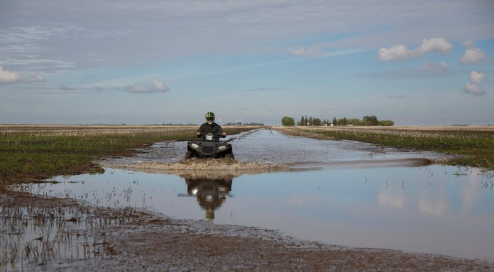 The weekend after Penner finished seeding, the farm got more than 50 millimetres of rain, turning some fields into lakes. (Mike Deal / Winnipeg Free Press)