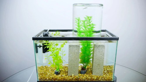 small resolution of co2 aquarium diagram