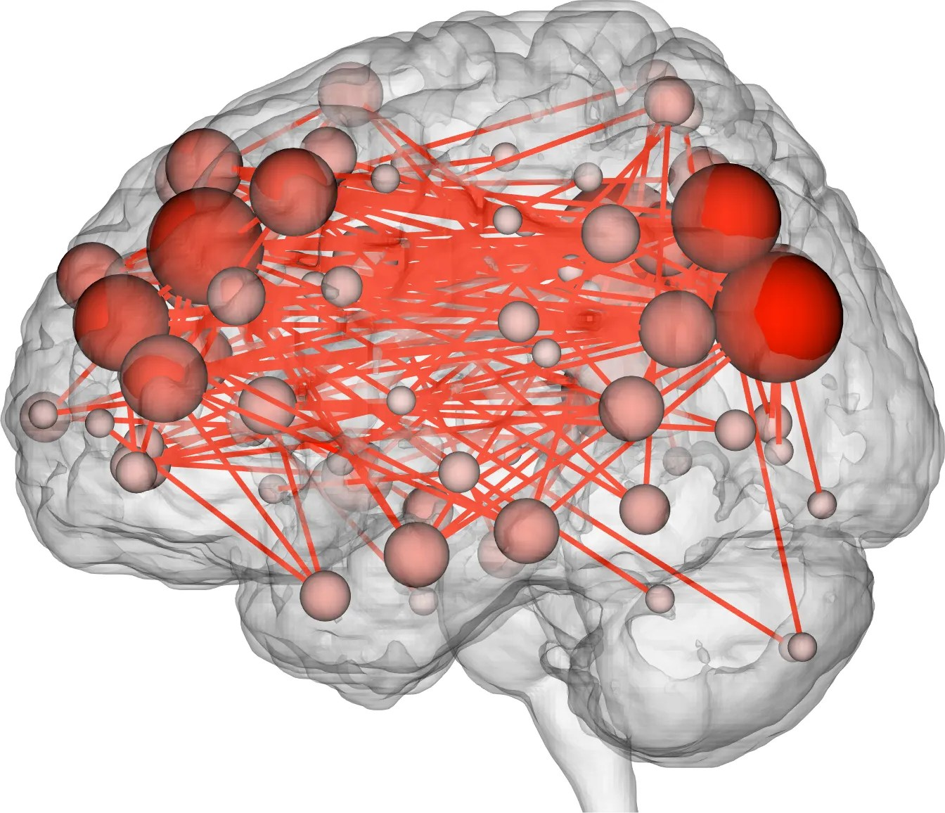 brain diagram inside dtmf decoder ic mt8870 pin scientists can now predict intelligence from activity wired