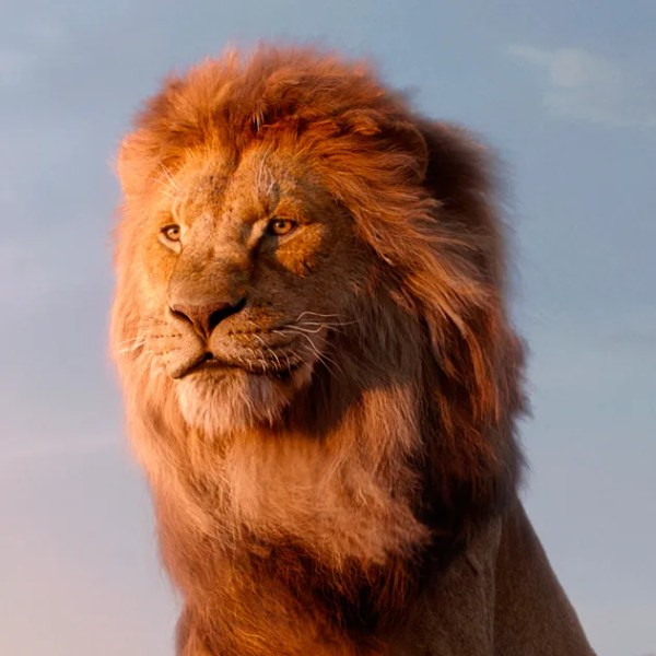 lion king # 34