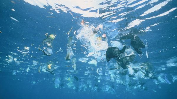 Plastic Busters limbarcazione ecologica a caccia di
