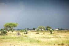 Regn på gång, Tanzania