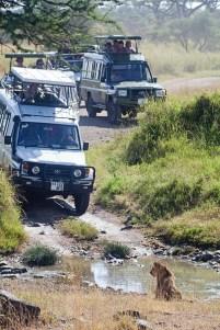 Turistattraktion, Tanzania