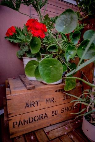 Jag har fått tag på en sån där luktande växt som mormor hade.