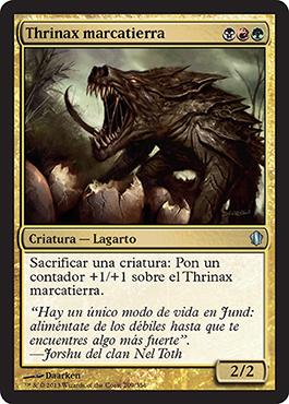 Thrinax marcatierra
