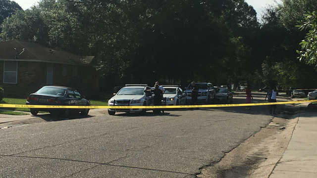 BREAKING: Police activity on Raven Drive in Mobile