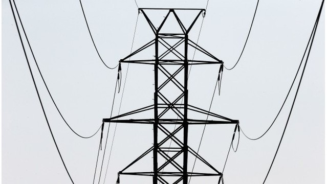 Consumers: Bird caused power outage