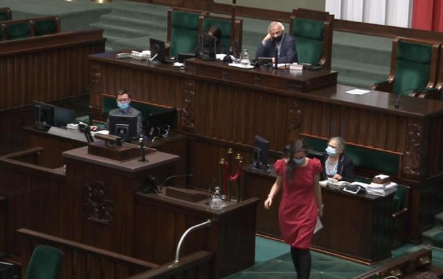 autor: screenshot/sejm.gov.pl