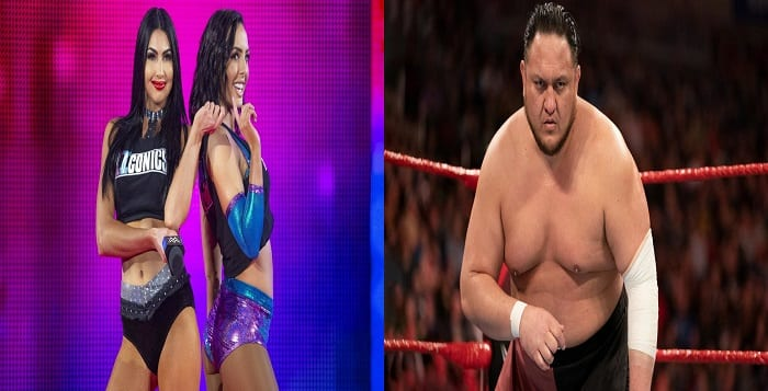 A Mixed Bag: Reactions From Released WWE Stars