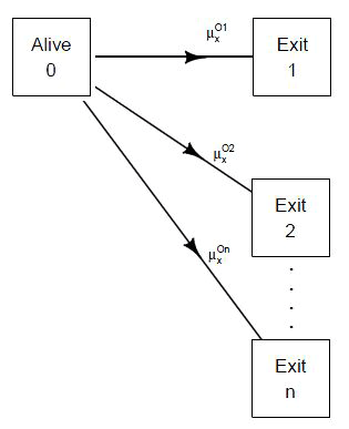 1. Examples of Multiple Decrement Models
