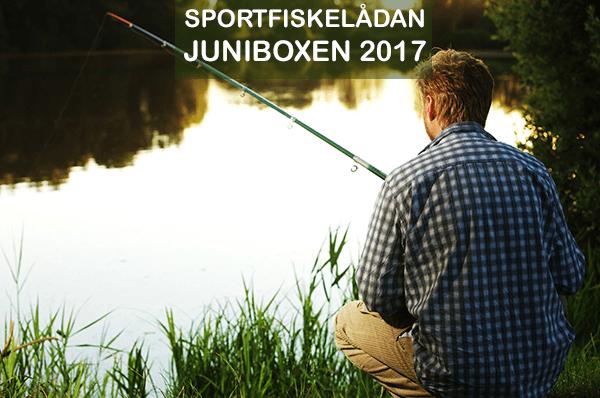 sportfiskelådan juni med big eye minnow, swim whizz, relaxjigga och andra fiskedrag