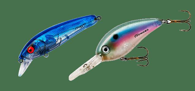 guide om fiskedrag