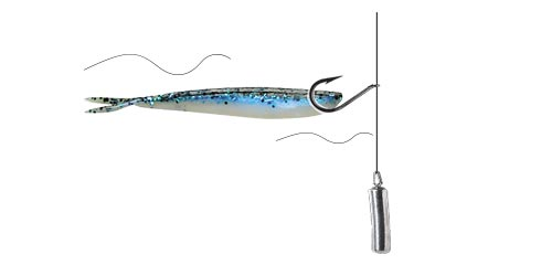 fisketeknik