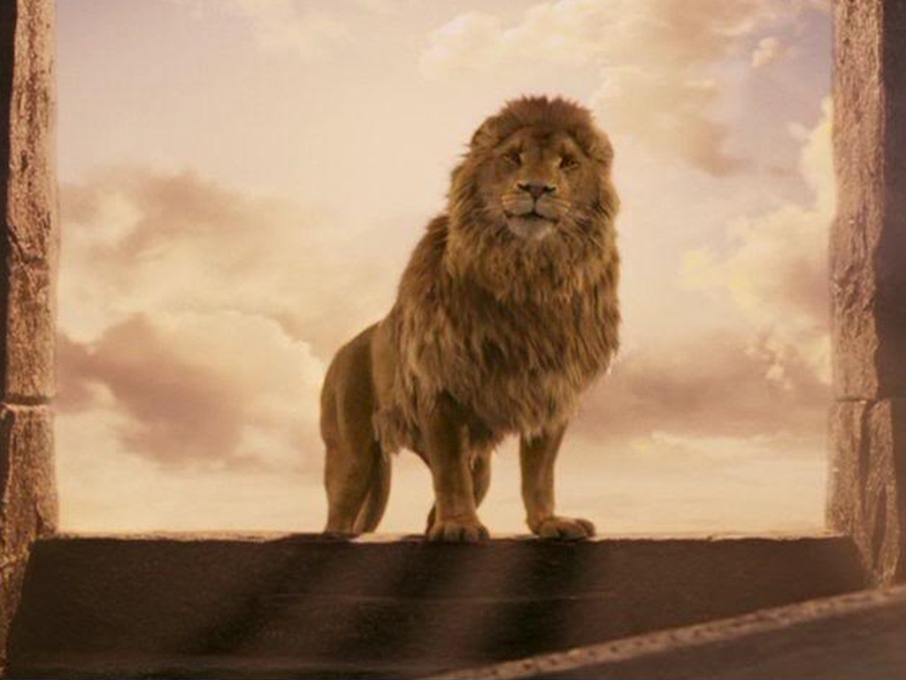 the chronicles of narnia silver chair blue tufted slipper quotcaptain america quot director to helm quotnarnia next