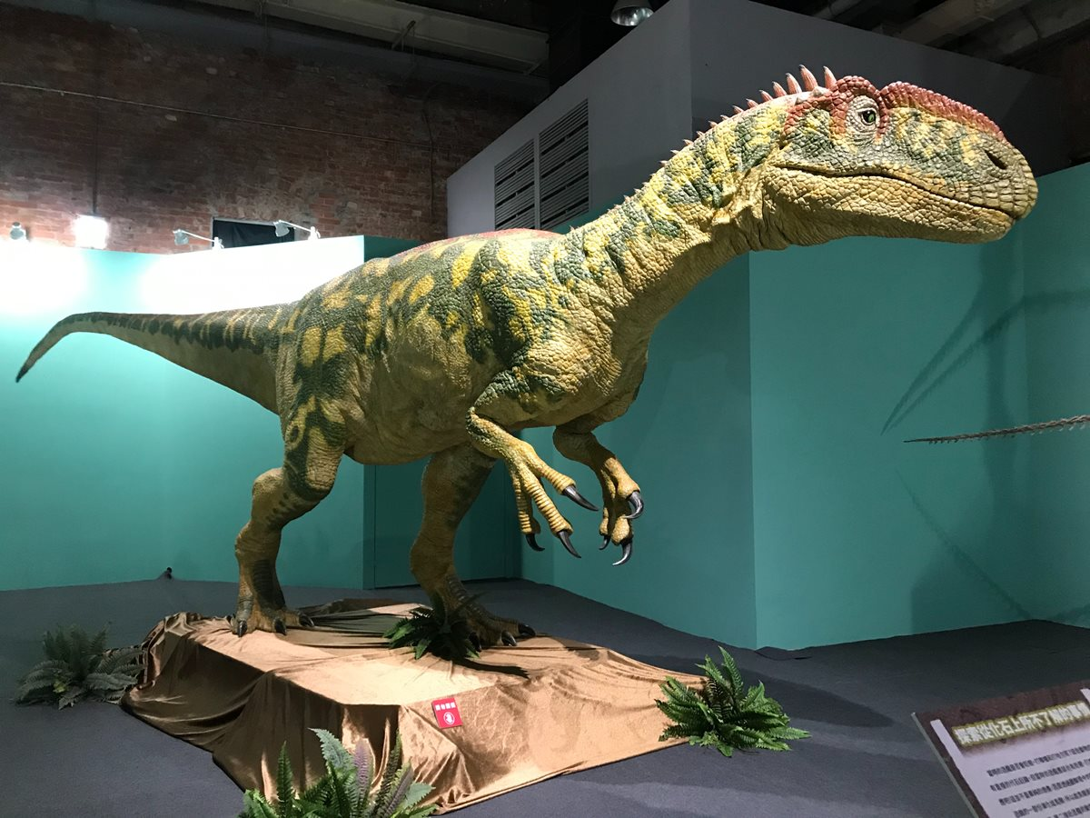 史上最多!12隻4米大型恐龍+17隻全身骨骼,日本「恐龍博物館」在臺北 - Yahoo奇摩旅遊