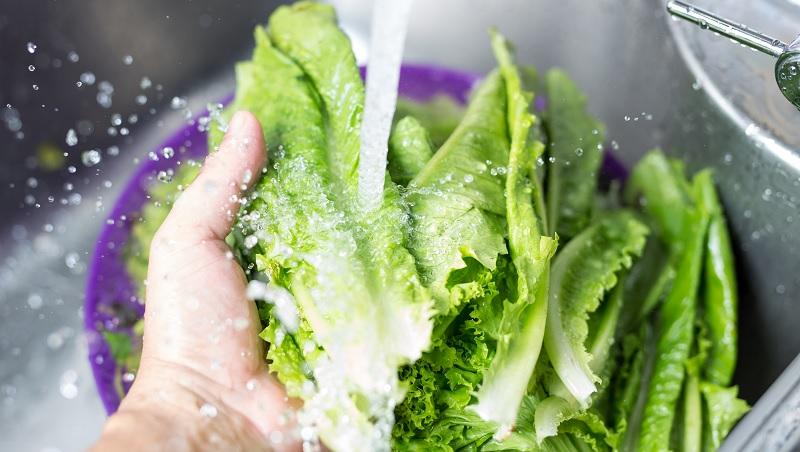 青江菜,地瓜葉...哪些蔬菜洗的時候,一定要浸泡?不想把農藥吃下肚,臺大農化系教授解析「16種蔬菜」正確 ...