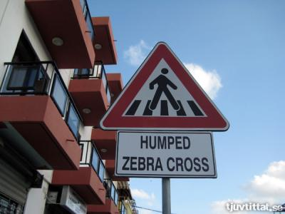 humped-zebra-cross