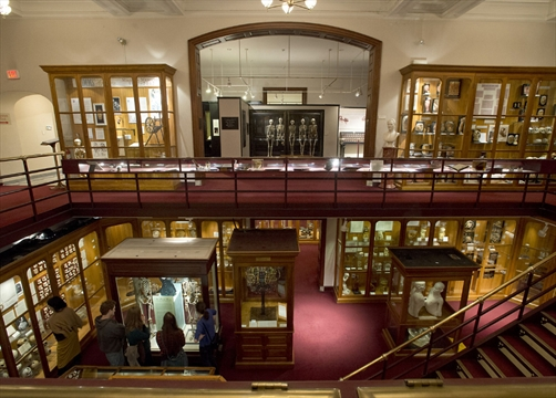 Travel Its what Philadelphias Mutter Museum is