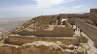 In den Ruinen von Masada haben die Samen von Datteln ungefähr 2.000 geruht.