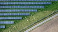Es grünt so grün: Solaranlagen bei Hildesheim