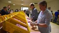 Wahlhelfer öffnen während der letzten Sozialwahl am 1. Juni 2017 Wahlbriefe.