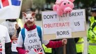 Viehzüchter protestieren am Dienstag während des Parteitags der Konservativen Partei in Manchester.