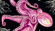 Weich, aber oho: Die Gehirne von Kraken und Wirbeltieren weisen erstaunliche Ähnlichkeiten auf.