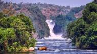Noch sind da keine Talsperren in Sicht: An den Murchison Falls in Uganda stürzen pro Sekunde dreihundert Kubikmeter Wasser in die Tiefe.