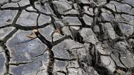 Bodenerosion: Das vergessene Universum