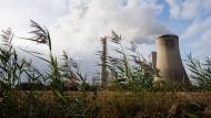 Kohlekraft gegen Grün: Wissenschaftler kritisieren, dass die Politik gegen den Kohlendioxidausstoß zu wenig tut.