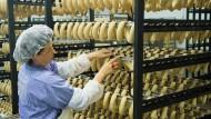 Neue Regeln für Schlachthöfe: Koalition beschließt Sonderrecht für Grillwurst-Unternehmen