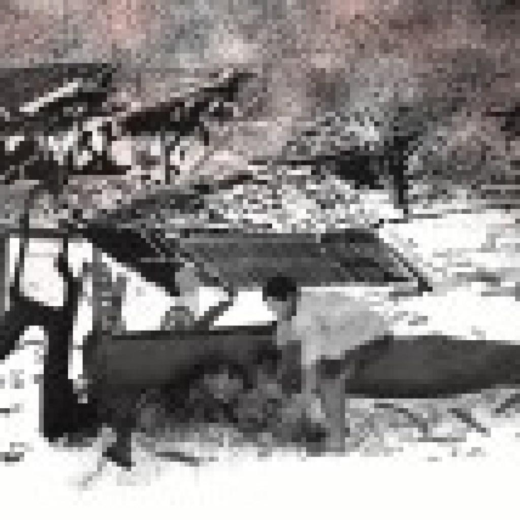 """Wie stark doch das Leben ist! Kerry Drewerys Hiroshima-Roman """"Der letzte Papierkranich"""""""
