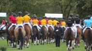 Aufs richtige Pferd gesetzt: Schüler der Prinz-von-Homburg-Schule bei der jährlichen Hengstparade