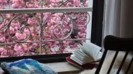 Zimmer mit Aussicht: Wer solch einen Fensterplatz hat, bleibt auch mal für ein paar Tage daheim.