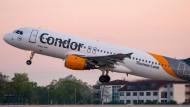 Ein Condor-Flug startet