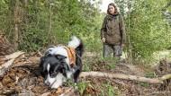 Ob Molch oder Otter: Zammy findet die Spur, dafür hat Annegret Grimm-Seyfarth ihren Hund ausgebildet.