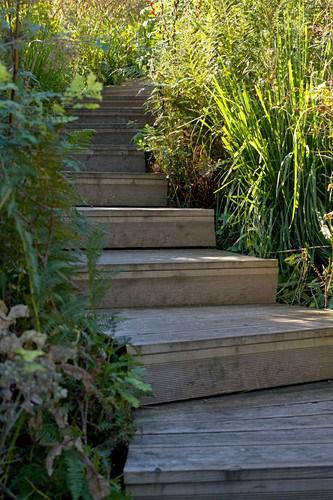 Winding Flight Of Wooden Steps In Garden – Buy Image – 12885598 | Wooden Handrail For Garden Steps | French Door Garden | Garden Stair | Landscape | Outside Step | Outdoor Near Me Step